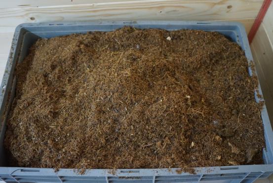 餐厨垃圾处理设备 (1).png